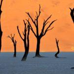 Deadvlei - Namib Desert, Namibia - 12 Breathtaking Places to Spend Your Birthday Vacation