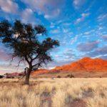 Namib Desert, Namibia - Twelve Breathtaking Places to Spend Your Birthday