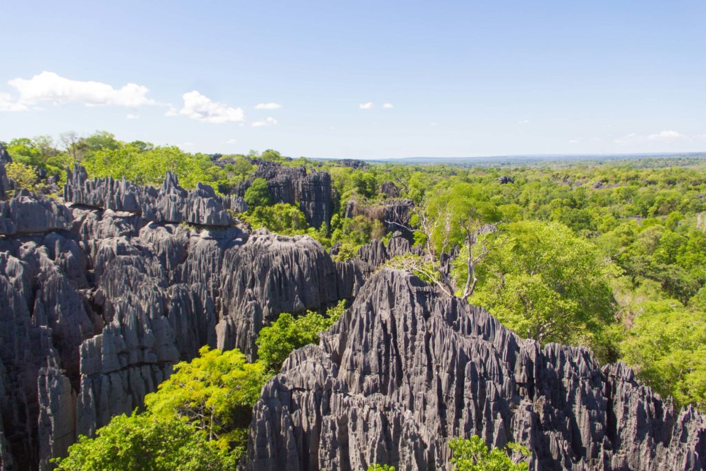 Tsingy stone forest in Madagascar - Travel to Madagascar